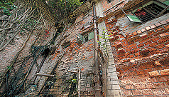 Enforce laws to resist building collapse:...