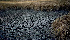 Climate change 'will make hundreds of...