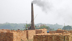Poba claims half of country's brick...