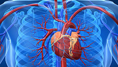 Heart failure survivors at greater risk...