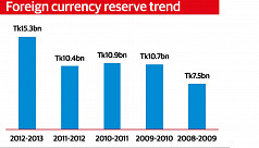 Forex reserve rises by 50% in FY13