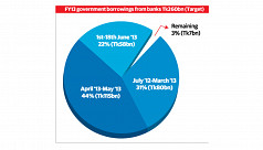 FY13 government borrowing from banks...