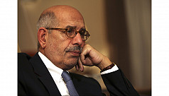 Egypt's interim vice president...