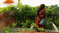 Economic self-reliance of rural women...