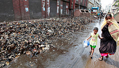 Waste-based power plants yet to see...