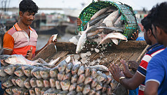10 fishermen jailed for violating Ilish...
