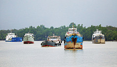 Vessel sinks in the Sundarbans: No salvage...