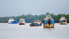 Sundarbans coal-cargo accident: Environmentalists...