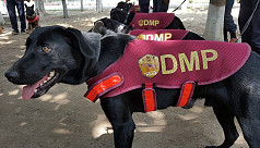 DMP's squad K-9 to be inducted