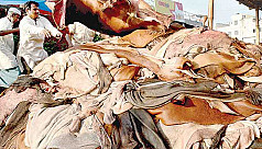 Traders reluctant to buy rawhide
