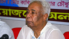 BNP's Hannan Shah on life support