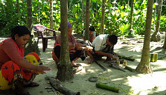 Alternative livelihoods boosting Inani...