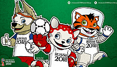 Russia announces 'Wolf' mascot for 2018...