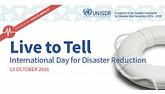 International Disaster Risk Reduction...