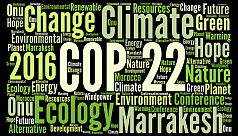 Will the Paris Agreement survive?