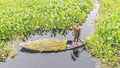 Bangladesh's development surprise