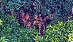 Photographer captures images of uncontacted...