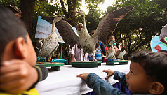 Bird Fair 2016 held in the capital
