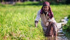 Surface water irrigation can make farmers...