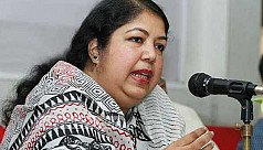 Shirin urges govt to make internet...