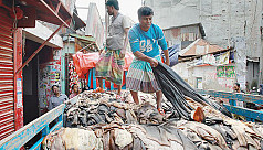 Order to shut down tanneries
