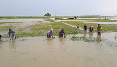 Negligence of officials blamed for flood...