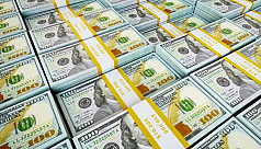 BB fears pressure on forex reserves...