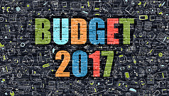 Govt turns to SD to meet budget...