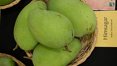 Malda mango growers demand immediate...