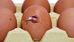 Suspected fake eggs sent to Chittagong...