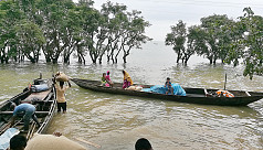NGOs help bridge aid gap in Haor...