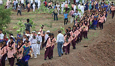 India plants 66m trees in 12hrs in record-breaking...