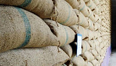 Govt to import 500,000 tons of rice...