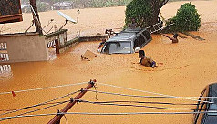 312 dead as mudslides, flooding sweep...