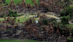 Rohingyas survive on leaves in burnt-down...