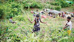 New Rohingya refugees face extortion...