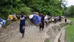 How have we handled the Rohingya crisis...