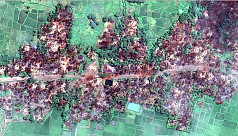 Satellite images show massive fire destruction...