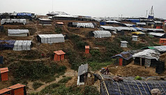 Rohingya influx: 15-year-old forestation...