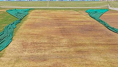 Curator banned after ODI pitch tampering...