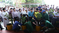 Rajshahi launch A6ATree Campaign