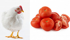Tomatoes are more expensive than chicken...