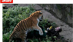 Visitors save zookeeper from Siberian...