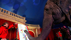 Paintings by Indian elephant auctioned...