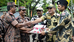 BSF: Insurgent camps on Bangladesh-India...