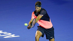 Del Potro beats top seed to reach Mexican...