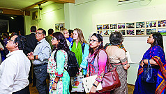 Photo exhibition documents 194 days...