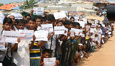 Rohingyas campaign for 'protected return...
