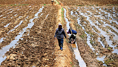 UN food agency aims to boost aid to...