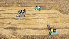 Mechanizing agriculture in rural...